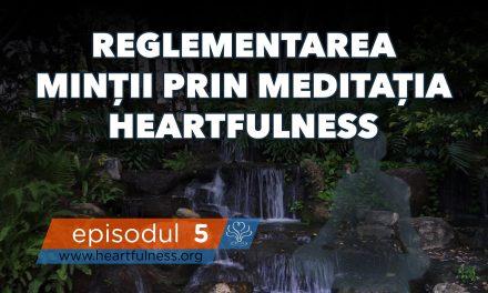 Reglementarea minții prin meditația Heartfulness