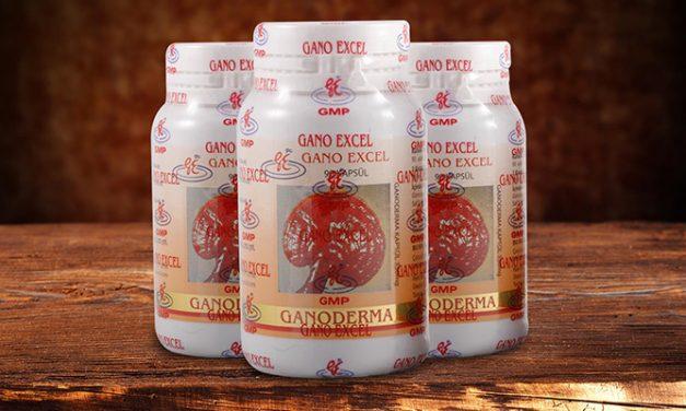 Ganoderma Lucidum – Supliment nutritiv