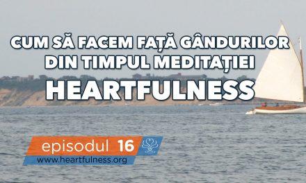 Cum să facem față gândurilor în timpul meditației Heartfulness