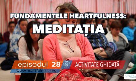 Meditația – Activitate ghidată
