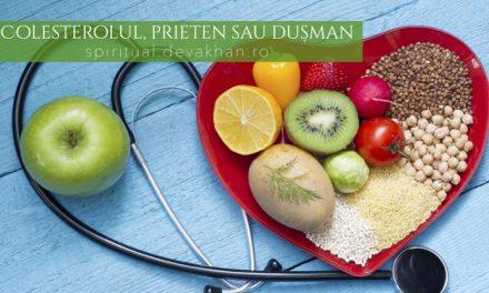 Colesterolul, prieten sau dușman