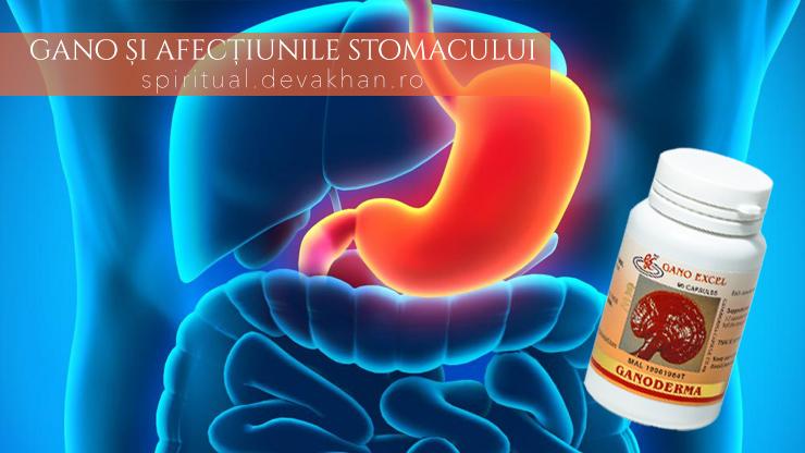 Ganoderma și gastrita, ulcerul gastric, ulcerul duodenal