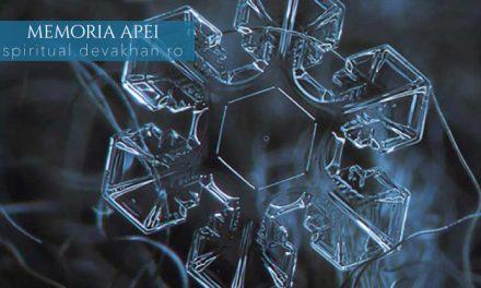 Memoria apei – structura moleculară a apei