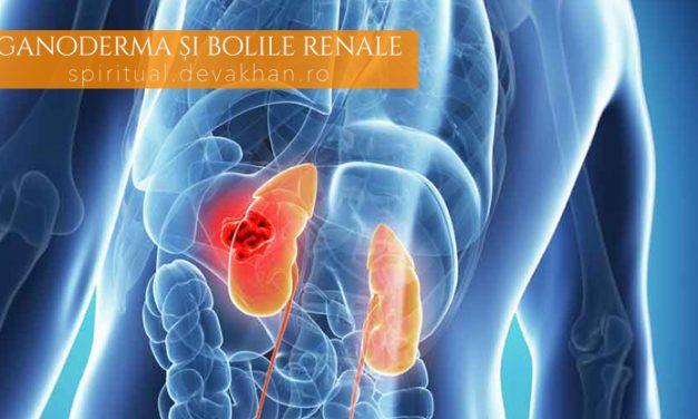 Ganoderma poate trata cu succes bolile renale