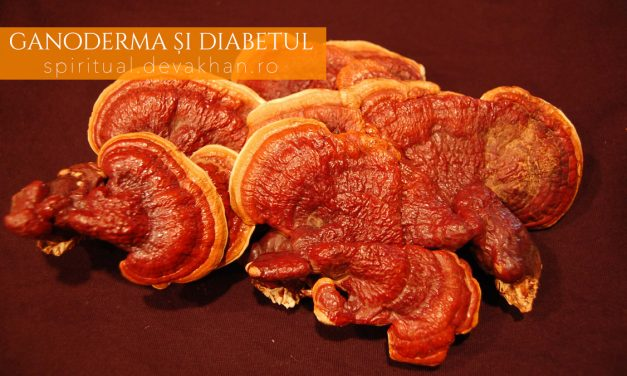 Cu Ganoderma, diabetul nu mai reprezintă o boală de temut